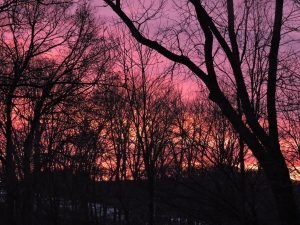 Winter Sunset- Kendra T